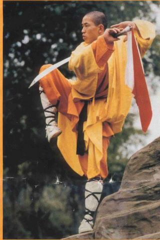 shaolin fighting styles